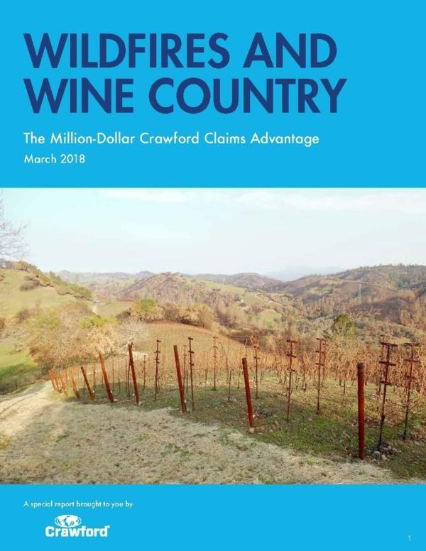 Global Case Study Vineyard Damage Img