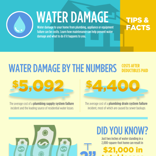 Global Water Damage Infographic Feature