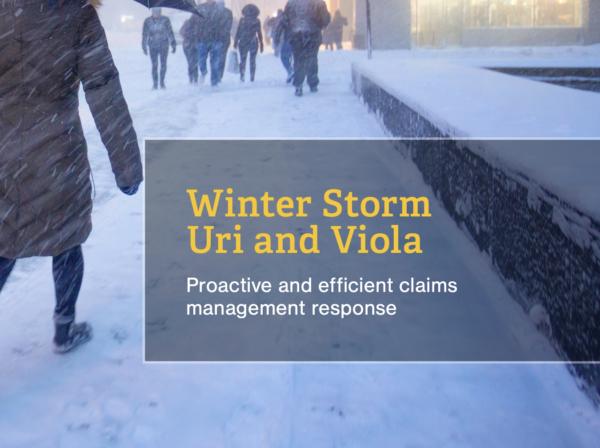 Us resource winter storm url viola