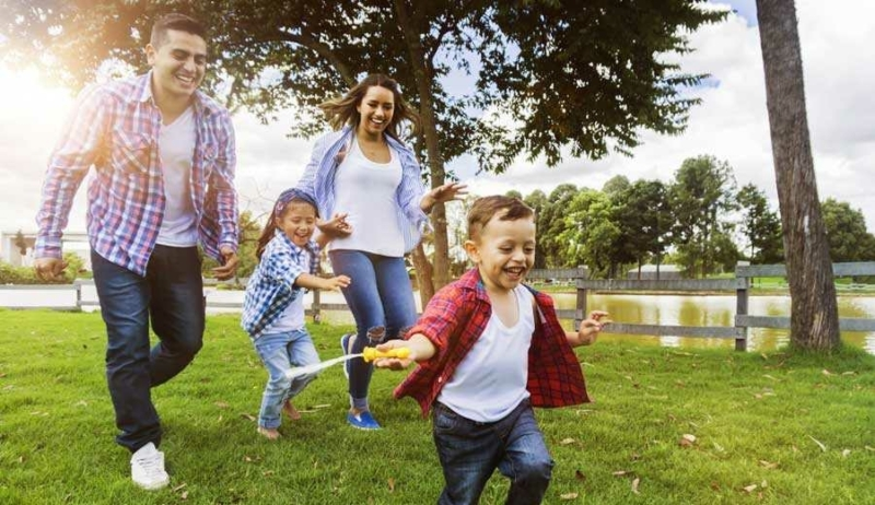 Global Insurance Carriers Content Like Family 2X