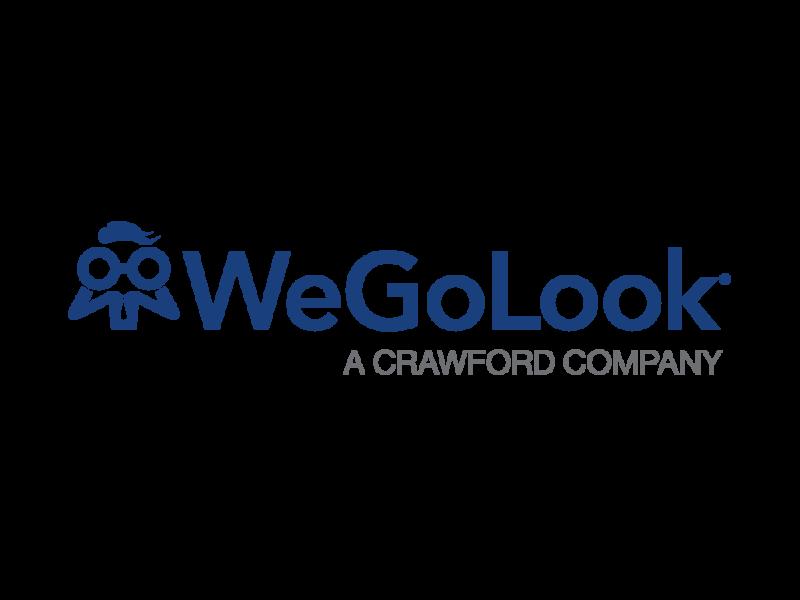 Global Wegolook Logo Formatted