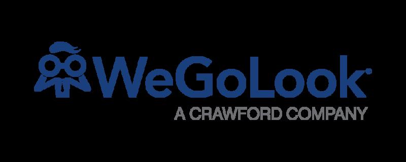 全球Wegolook标志格式2