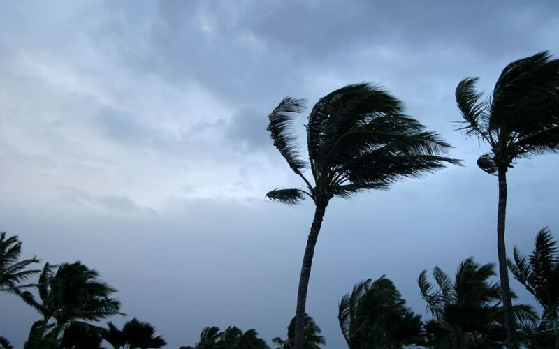 Cat Event Hawaii Hurricane August 001