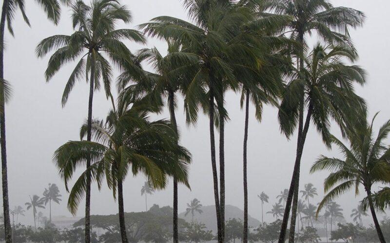 Cat Event Hawaii Hurricane August 003