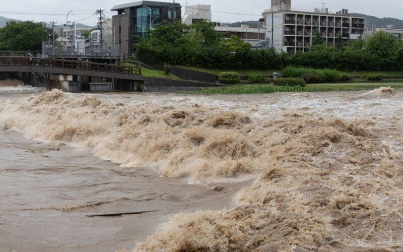 Cat Event Typhoon Jebi Japan September 2018 001