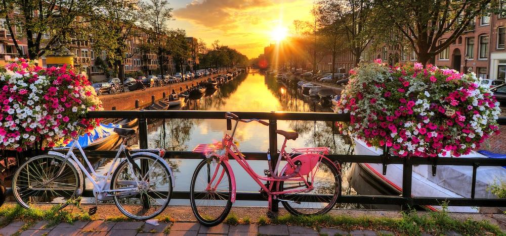 荷兰的全球特性